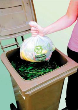 Model zbierania bioodpadów w Berlinie
