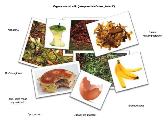 Rys. 1. Synonimy bioodpadów w rozumieniu mieszkańców (na podstawie badania przeprowadzonego w 2012 r. przez TNS na zlecenie ZGO Gać)