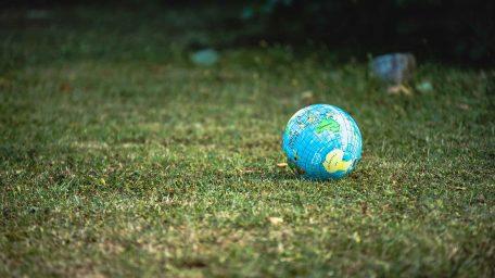 Selektywna zbiórka bioodpadów – To się wszystkim opłaci